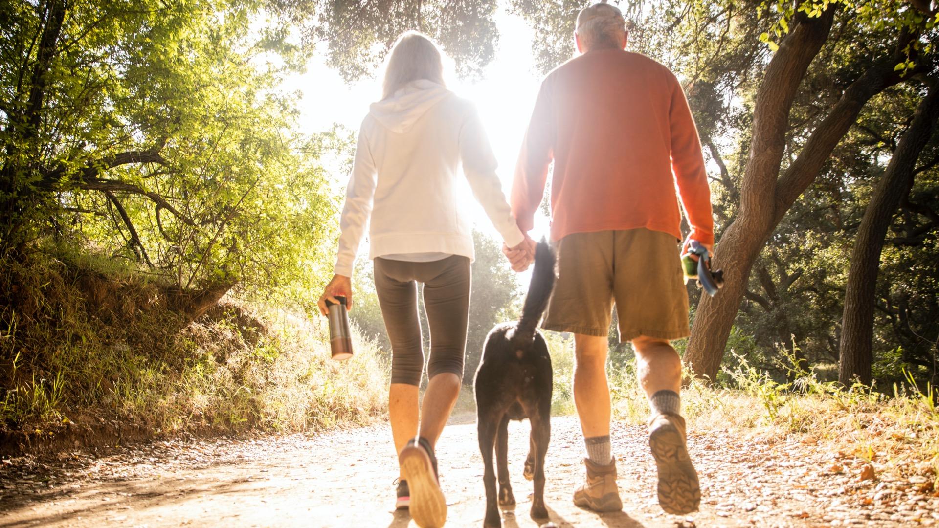 A couple and a dog walking through a park near Columbia, South Carolina